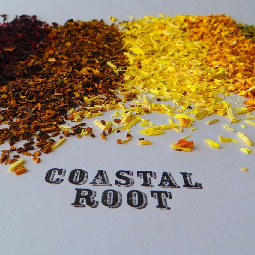 Coastal Root Bitters